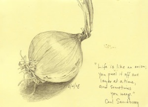 onion_document