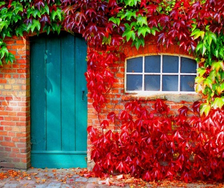 autumn-962755_640