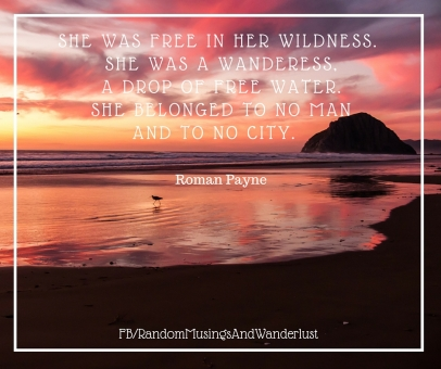 Wanderss quote